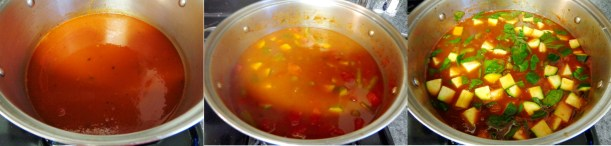 Minestrone Compiled Pictures 2.jpg
