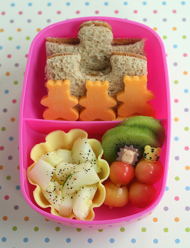 Another Lunch, Bento Lunch Pic