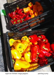 iPhone daily mega peppers 8 10 13